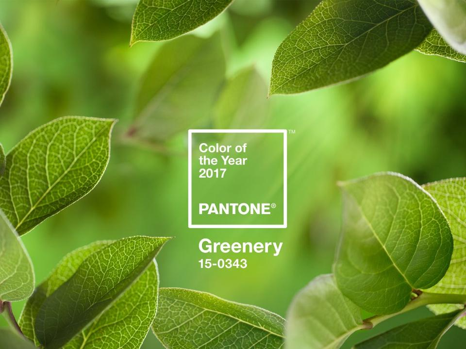 PANTONE-Color-of-the-Year-2017-Greenery-15-0343-leaves-2732x2048-1200x900