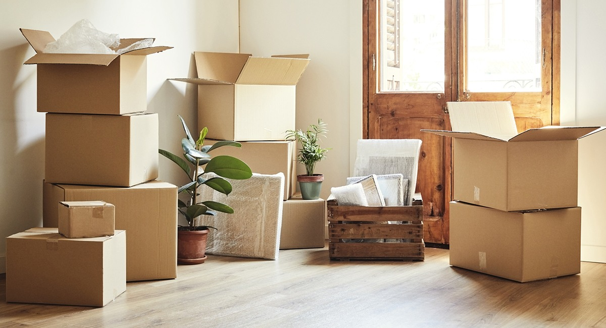 Settle in a New Home Move