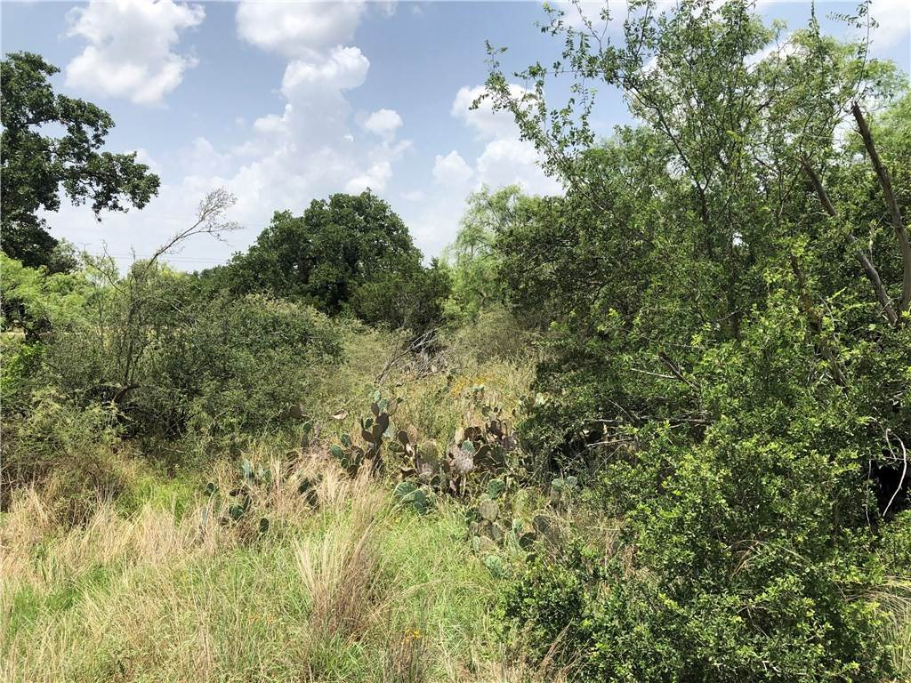 Land for Sale at Lots 352-356 Rosehill Granite Shoals, Texas 78654 United States