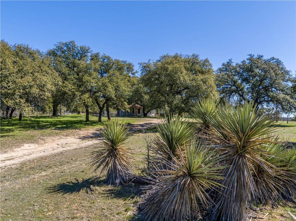 Farm for Sale at 1251 County Road 360 Gustine, Texas 76455 United States