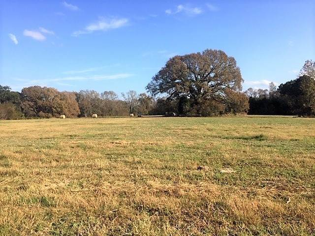 Land for Sale at 0 CR 3704 Athens, Texas 75752 United States