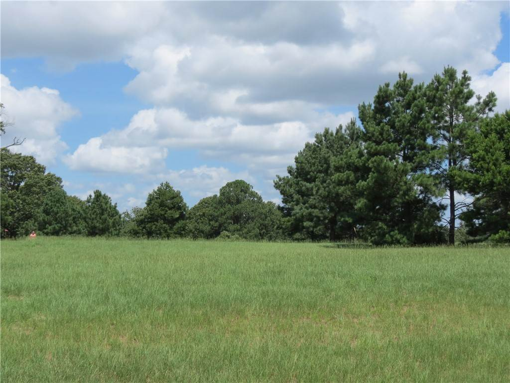 Land for Sale at 24002 WildflowerCircles Lindale, Texas 75771 United States