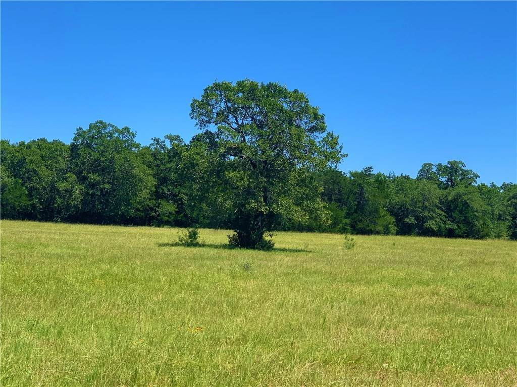 Farm for Sale at TBD FM 2237 Flatonia, Texas 78941 United States