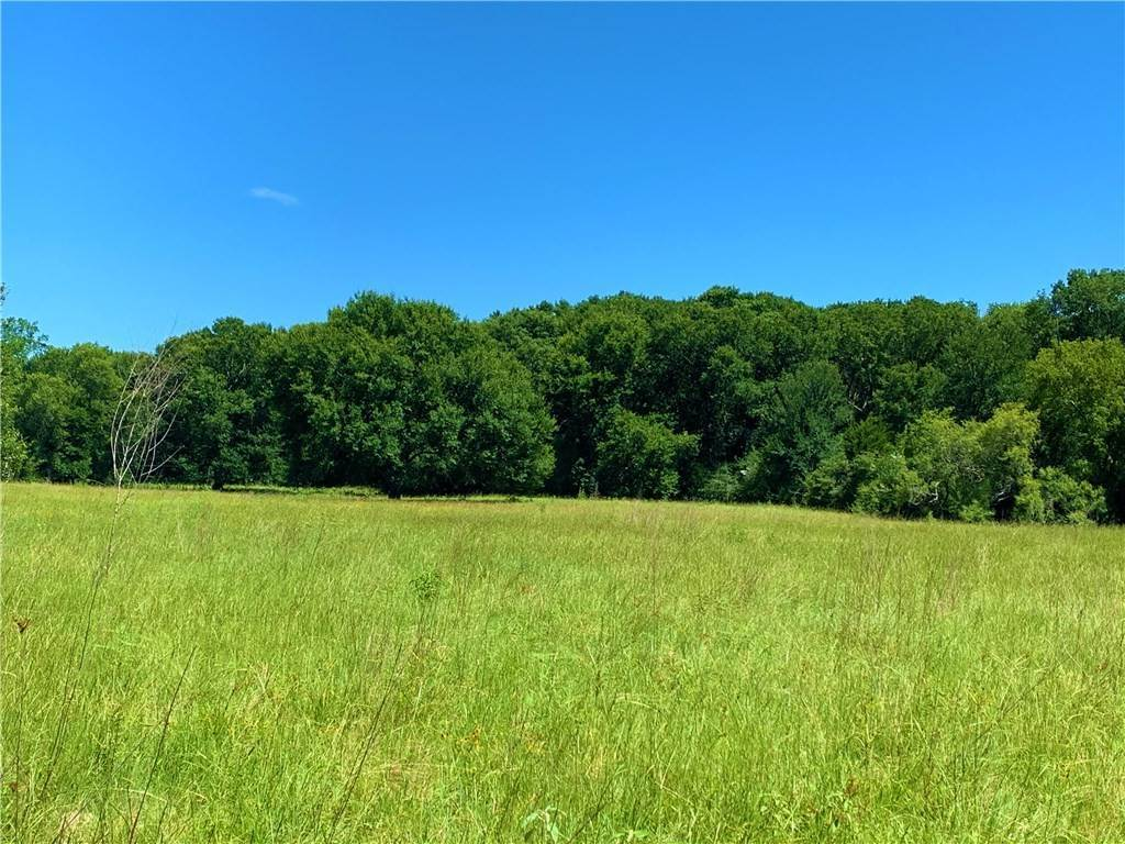 Farm for Sale at 001 RoyRoad Flatonia, Texas 78941 United States