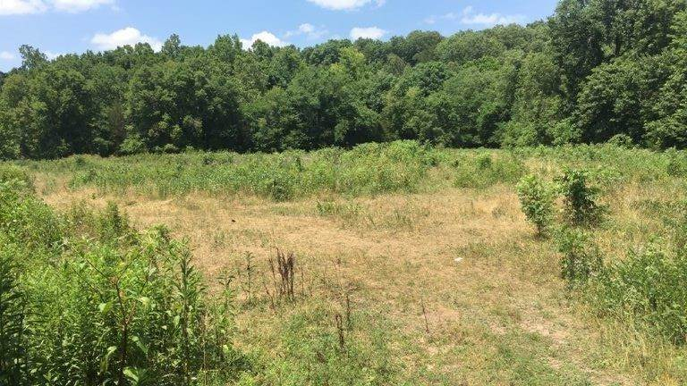 Land for Sale at 33AC Farm Road 2190 Exeter, Missouri 65647 United States