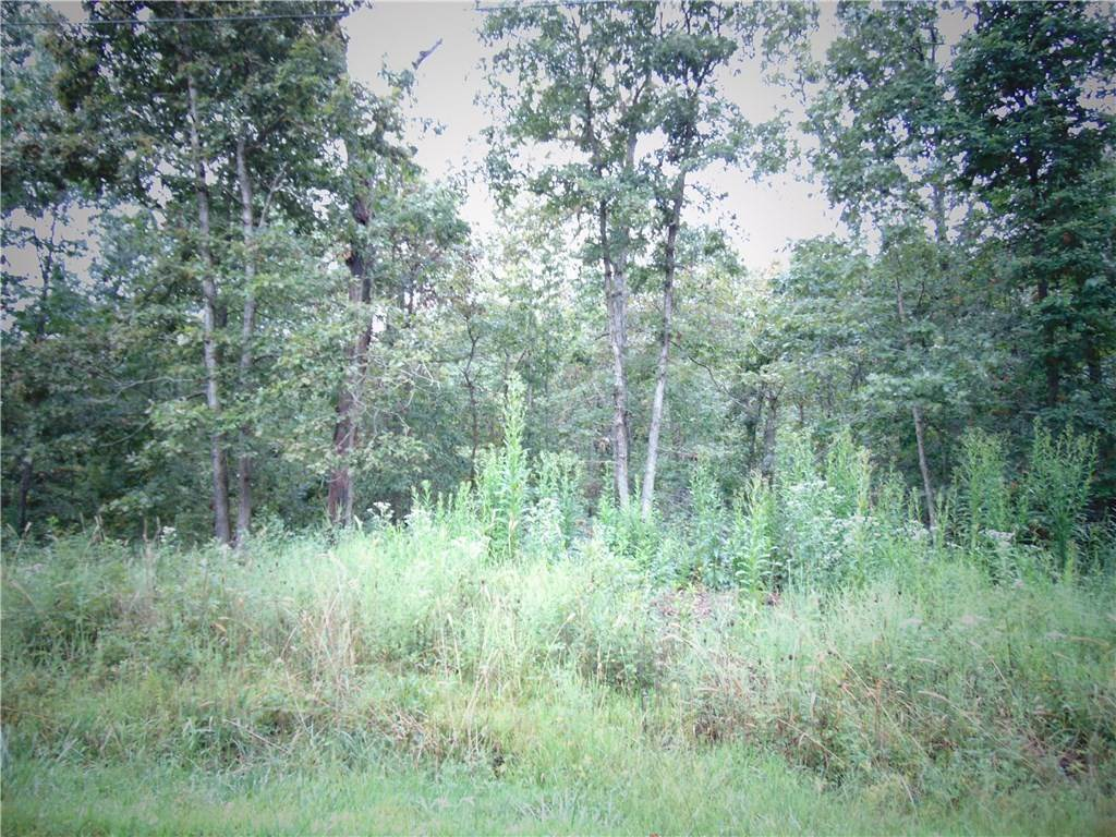 Land at Dunkeld Drive Bella Vista, Arkansas 72715 United States