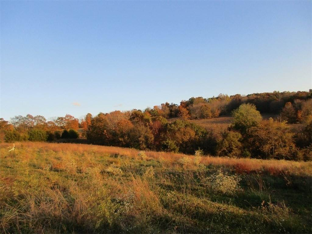 Land for Sale at Madison 7075 Hindsville, Arkansas 72738 United States