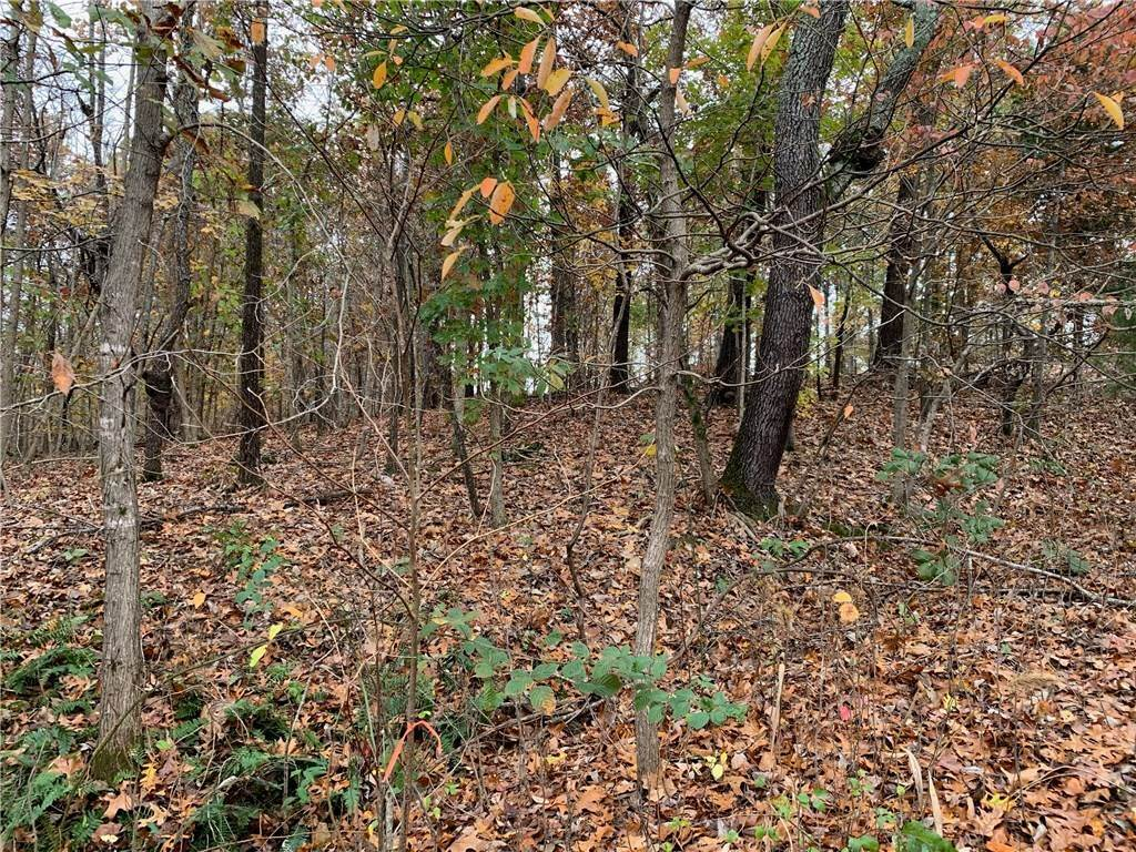 Land at Lot 4 Bridgeport Lane Bella Vista, Arkansas 72715 United States