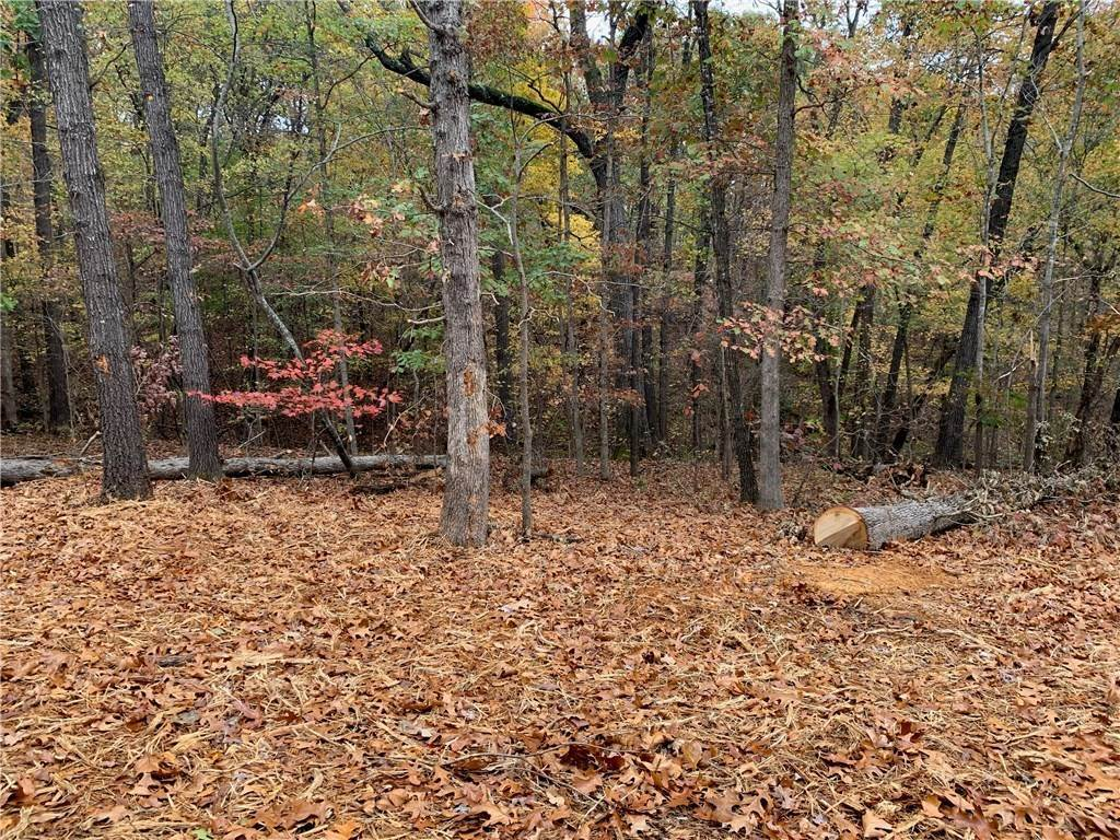 Land at Lot 4 Skipton Drive Bella Vista, Arkansas 72714 United States
