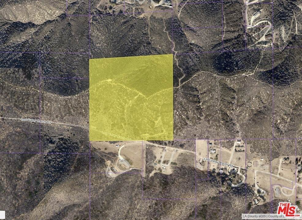 Land for Sale at Vac/Vic 95Th Stw Leona Valley, California 93551 United States