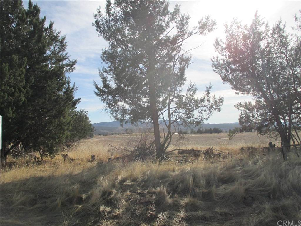 Land for Sale at Highway 371 Anza, California 92539 United States