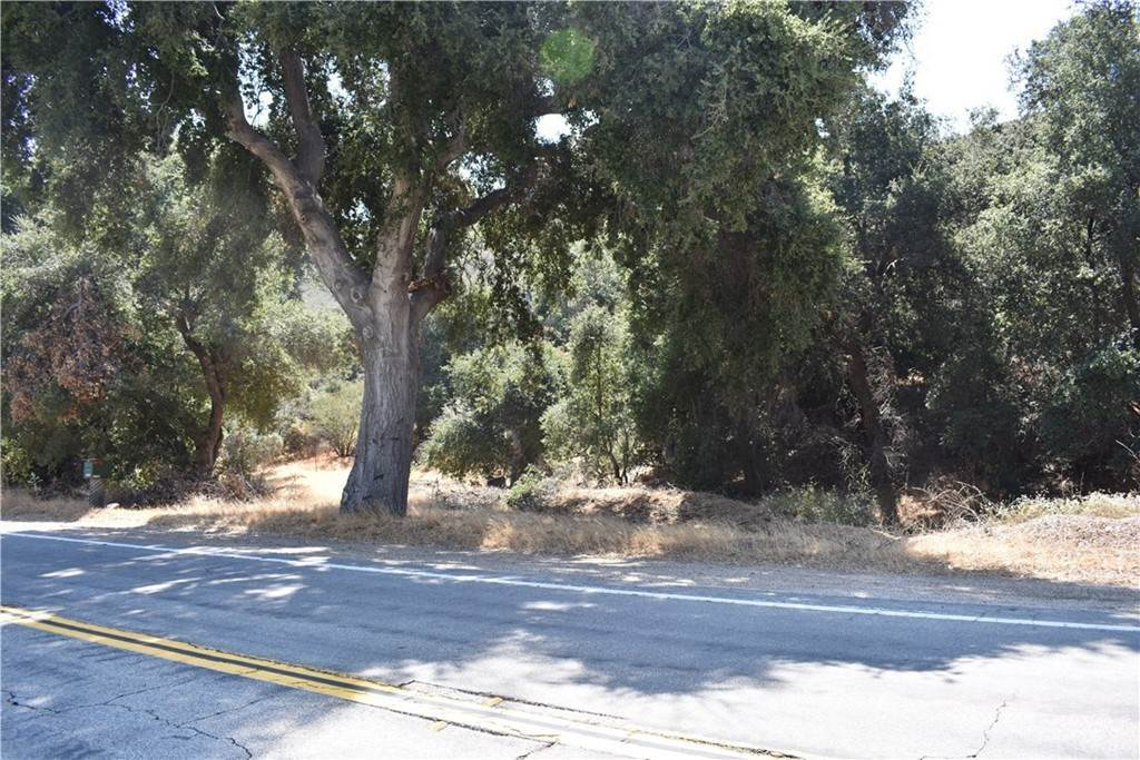 Land for Sale at vic Bouquet Canyon Leona Valley, California 91390 United States