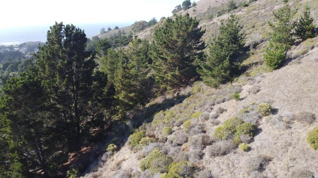 3. Land for Sale at Calera Terrace Pacifica, California 94044 United States