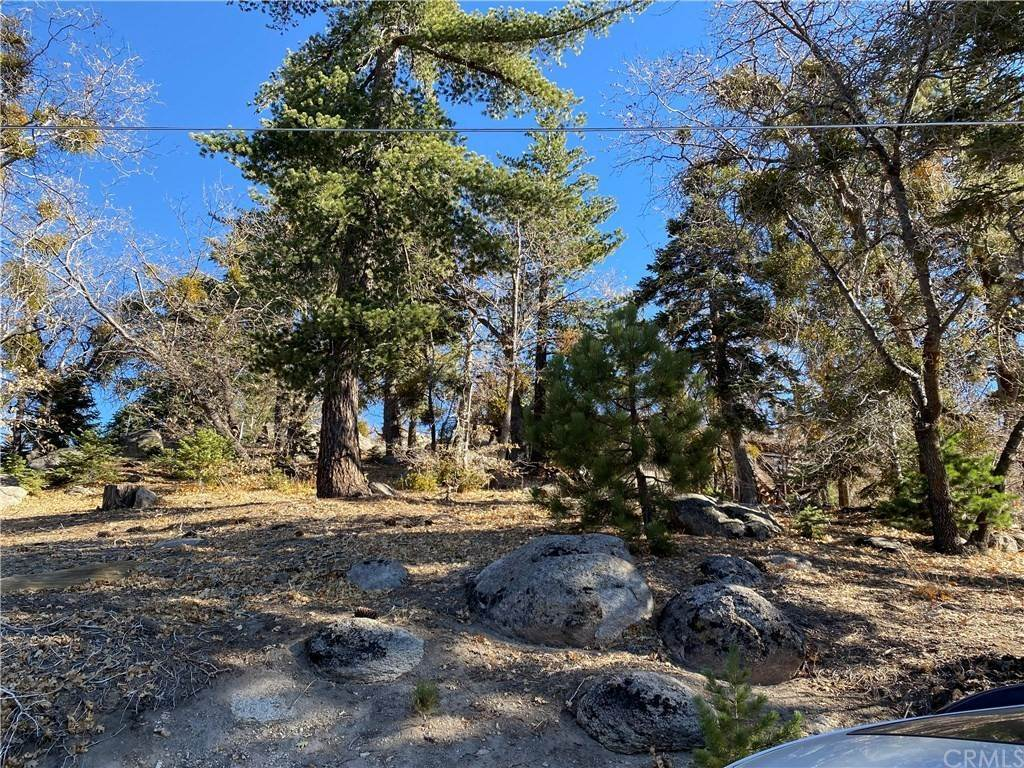 Land for Sale at Ponderosa/Music Camp/Tank Arrowbear Lake, California 92382 United States