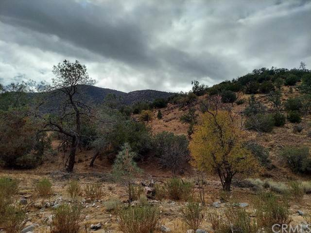 Land for Sale at Calient Creek Road Caliente, California 93518 United States