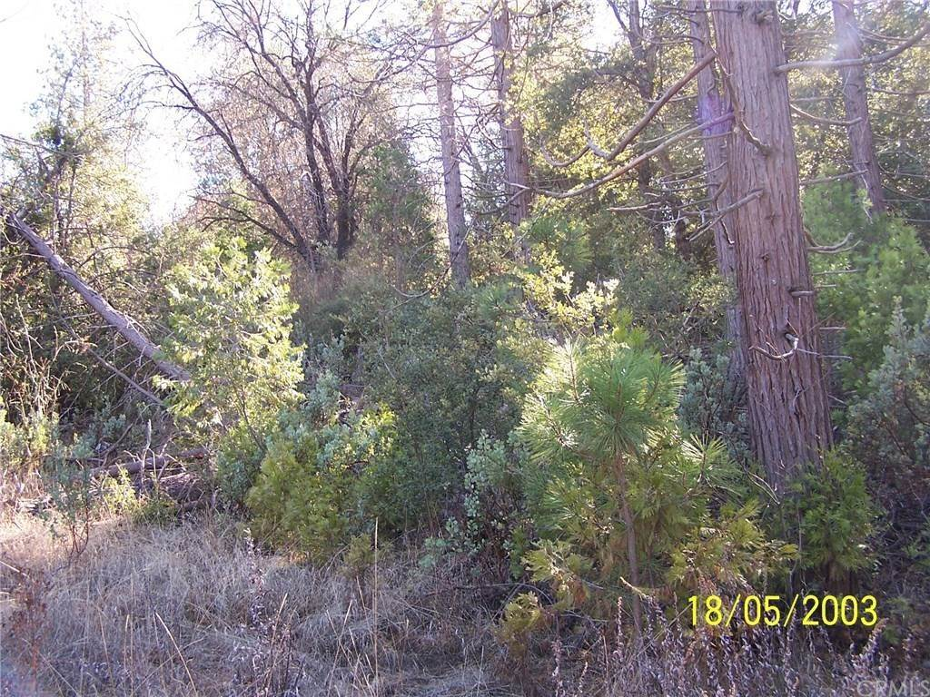 Land for Sale at Old Yosemitre Road Oakhurst, California 93644 United States