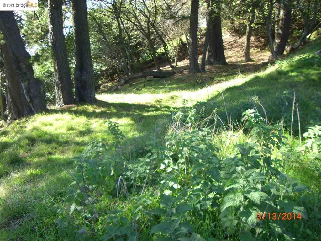 2. Land for Sale at Grizzly Peak Blvd Oakland, California 94611 United States