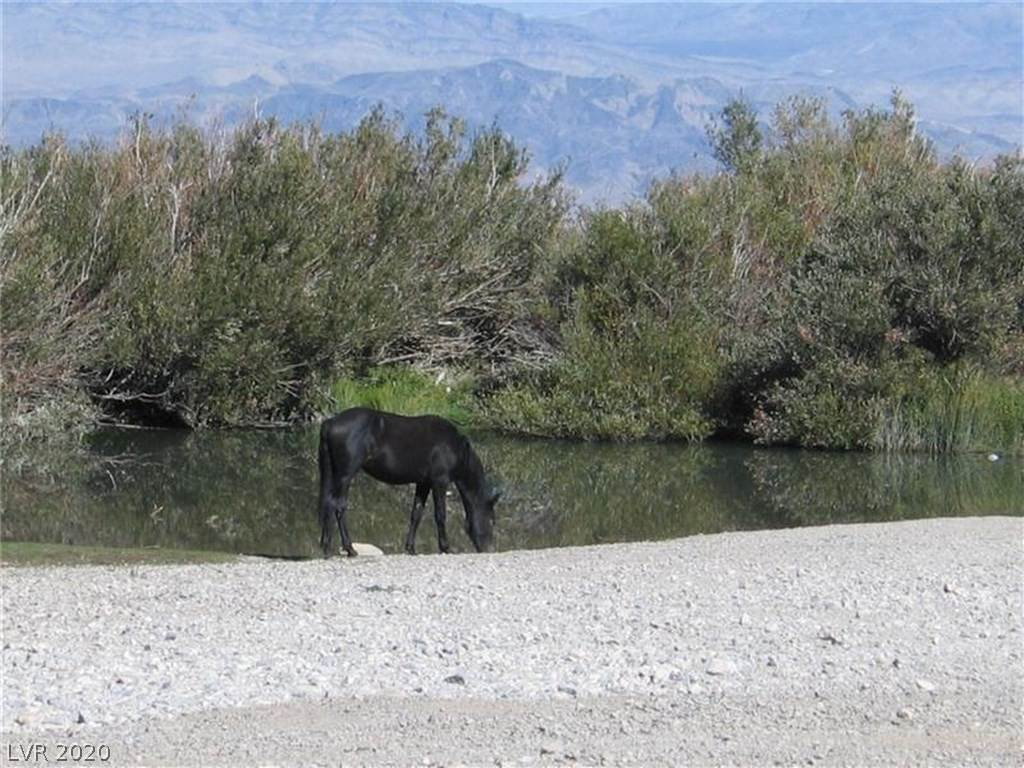 Land for Sale at 151 Wind Drift Cold Creek, Nevada 89124 United States