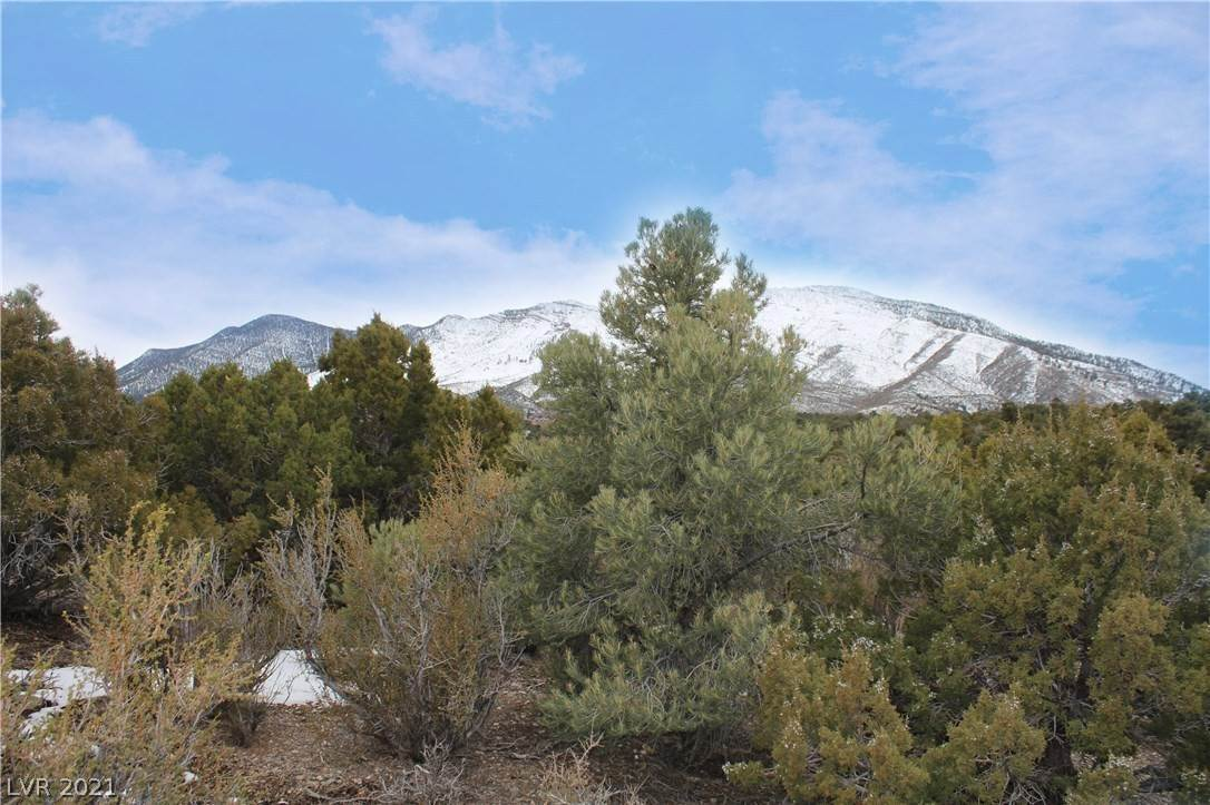 Land for Sale at Crockett Cold Creek, Nevada 89124 United States