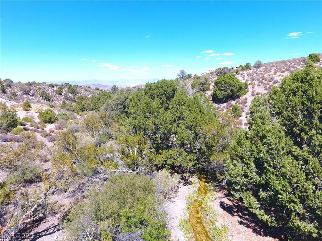 Land for Sale at Bugling Bull Road Cold Creek, Nevada 89124 United States