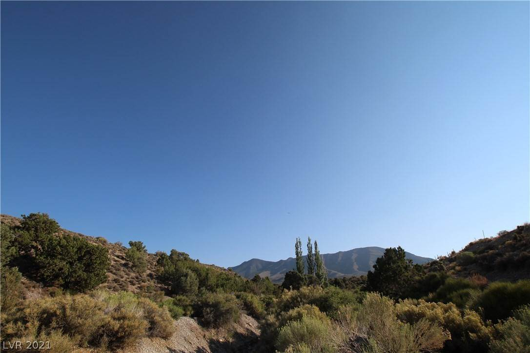 Land for Sale at Angeline Cold Creek, Nevada 89124 United States