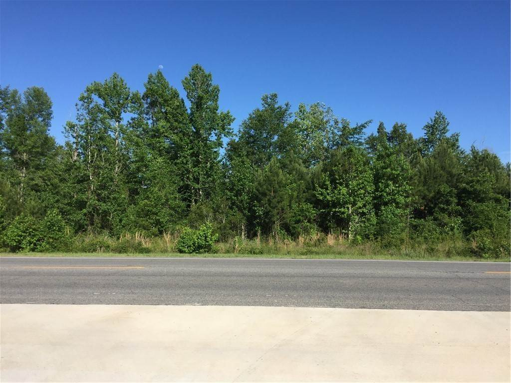Land for Sale at U S 17 S/E Highway Eulonia, Georgia 31331 United States
