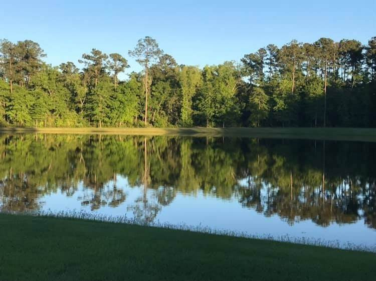 Residential for Sale at 105 club Drive Waverly, Georgia 31565 United States