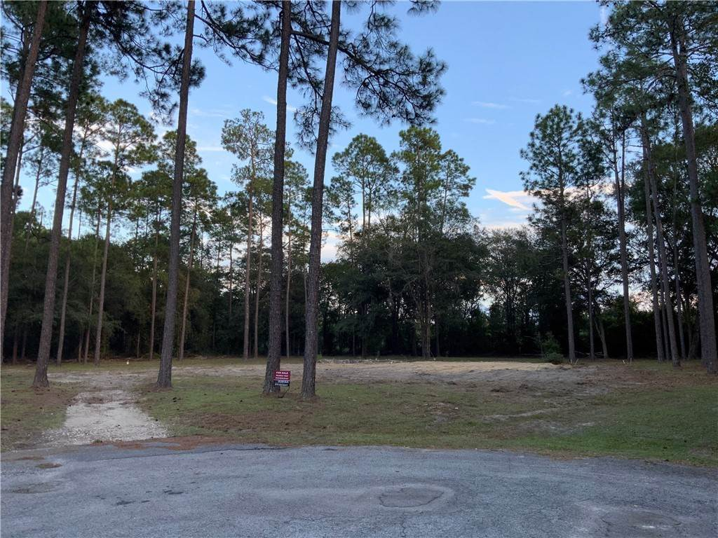 Land for Sale at 6254 BLUEBIRD Drive Blackshear, Georgia 31516 United States