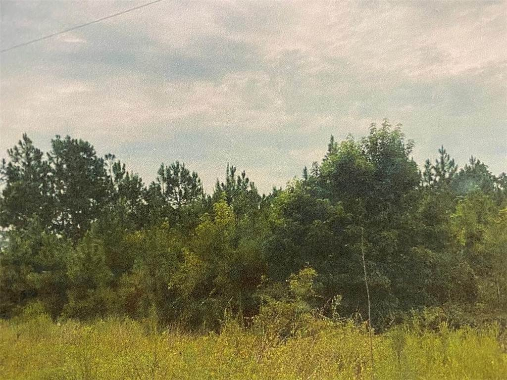 Land for Sale at 15 Bethlehem Road Road Jesup, Georgia 31545 United States