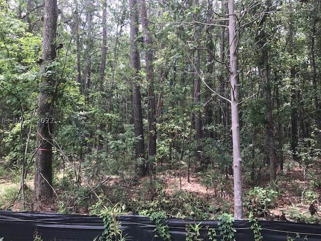 Land for Sale at Address Not Available Bluffton, South Carolina 29910 United States