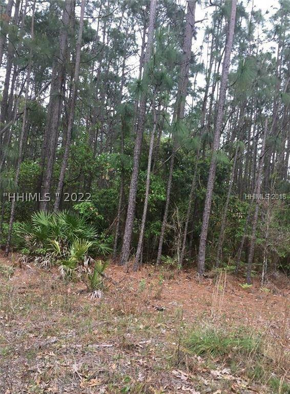 Land for Sale at Off Hwy 17 Pocataligo, South Carolina 29945 United States