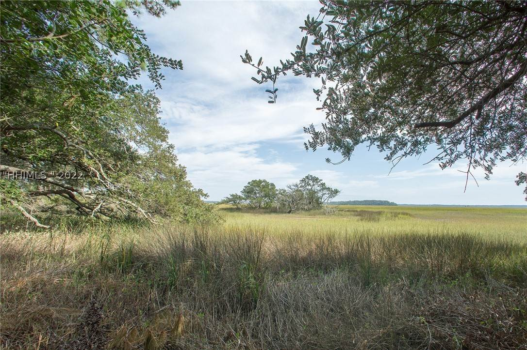 Land for Sale at 337 Davies Road Bluffton, South Carolina 29910 United States