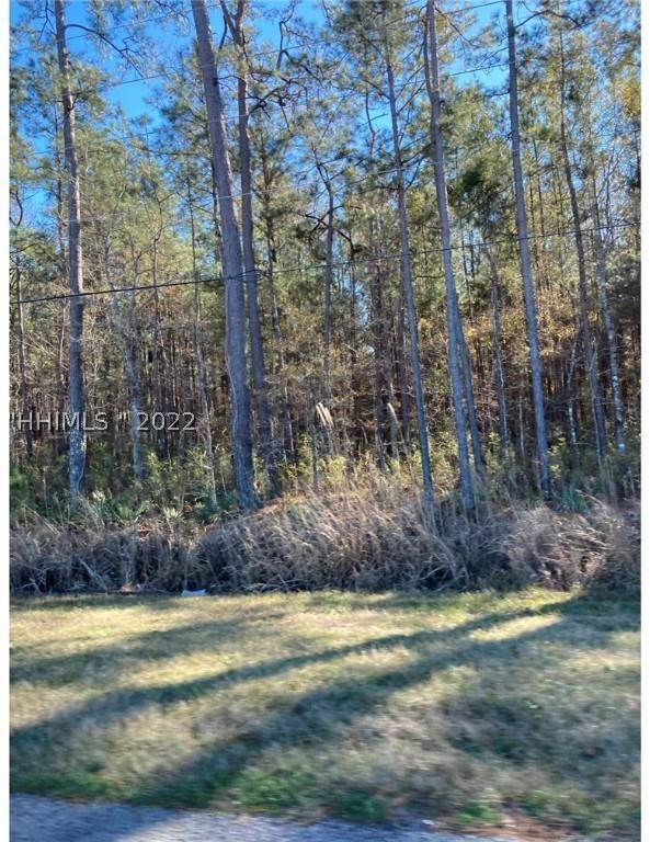 Land for Sale at 244 Whyte Hardee Boulevard Hardeeville, South Carolina 29927 United States