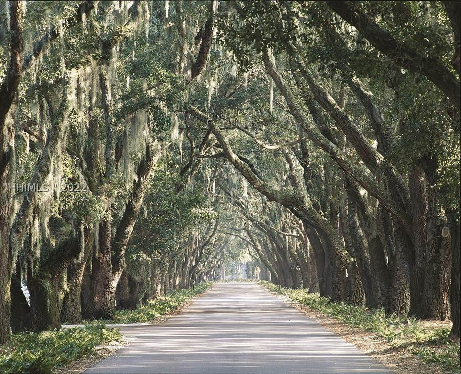 8. Land for Sale at 182 Summerton Drive Bluffton, South Carolina 29910 United States