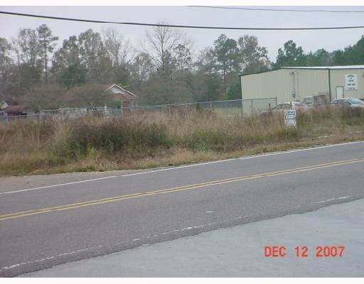 Land for Sale at HWY 43 HWY 43 Albany, Louisiana 70711 United States