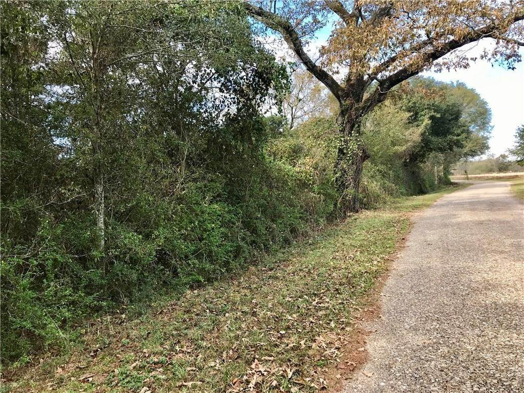 Land for Sale at HOLMESVILLE Road Mount Hermon, Louisiana 70450 United States