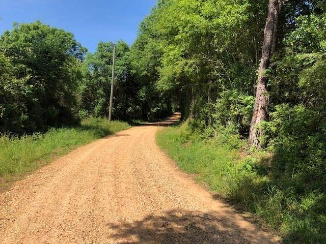 Land for Sale at BURCH Road Mount Hermon, Louisiana 70450 United States