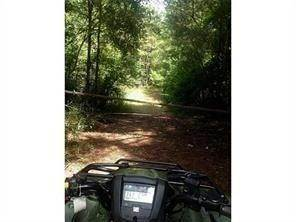 Land for Sale at RICHARDSON Lane Husser, Louisiana 70442 United States