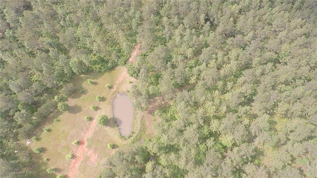 Land for Sale at ARD Road Greensburg, Louisiana 70441 United States