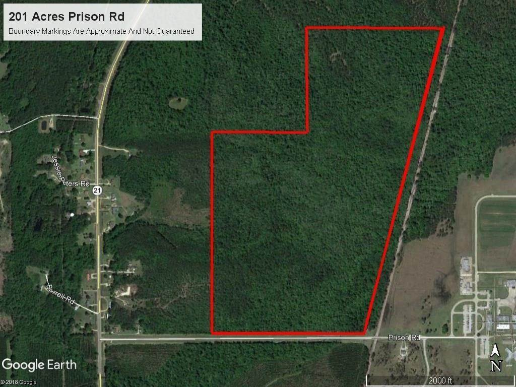 Land for Sale at 202 AC PRISON Road Angie, Louisiana 70426 United States