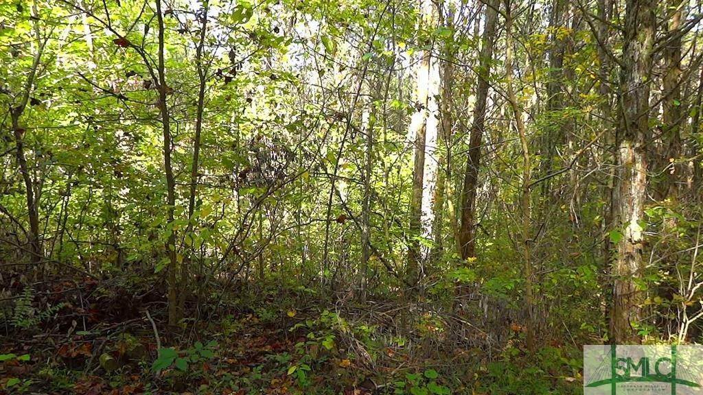 Land for Sale at LOT 3 KINGS Road LOT 3 KINGS Road Midway, Georgia 31320 United States