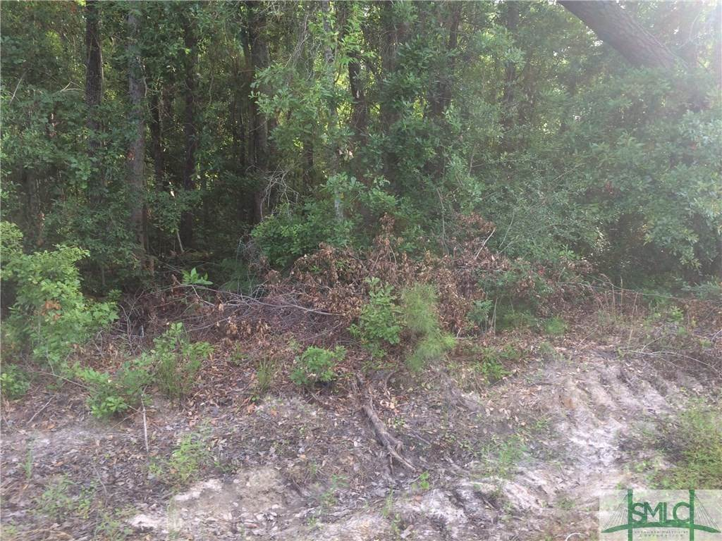 Land for Sale at Frazier Drive Riceboro, Georgia 31323 United States