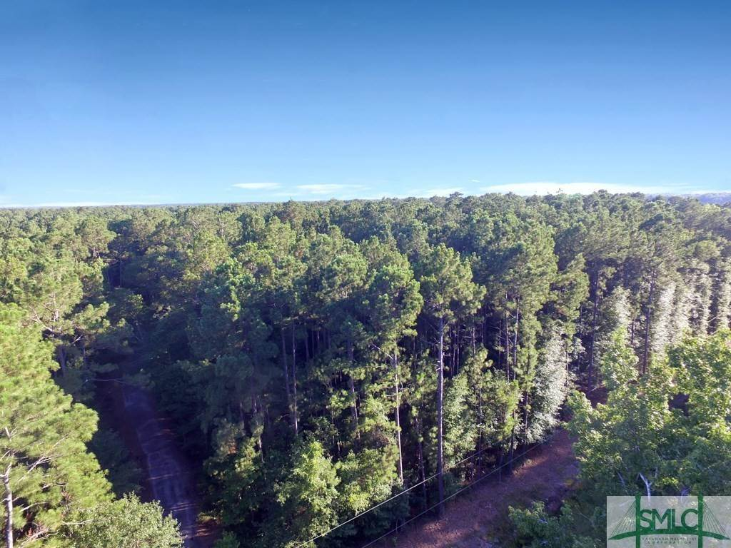 Land for Sale at Lot 8 Burkhalter Road Statesboro, Georgia 30458 United States
