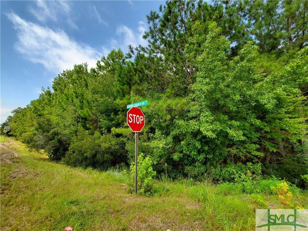 Land for Sale at Hwy 280 & Athen Church Road Pembroke, Georgia 31321 United States