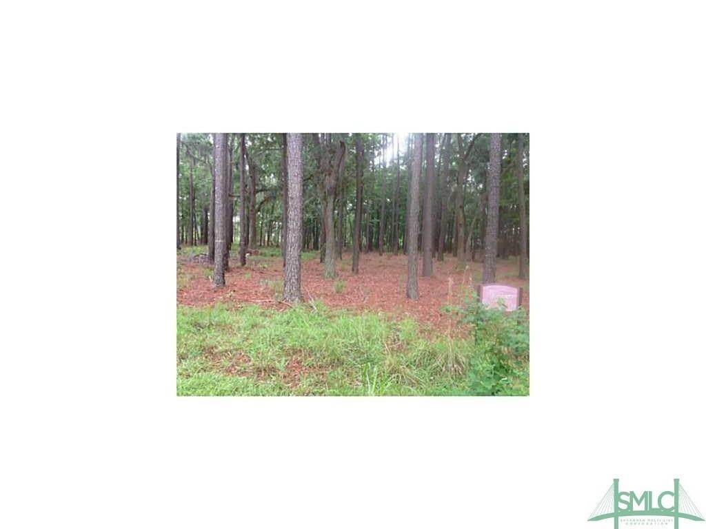 Land for Sale at Ferry Road Riceboro, Georgia 31323 United States