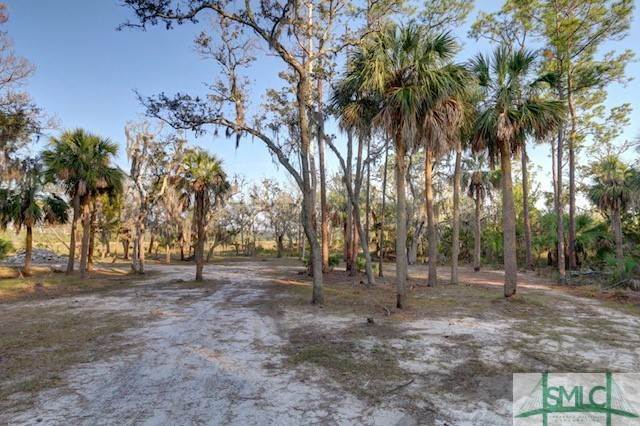 9. Land for Sale at 1810 Turners Rock Road 1810 Turners Rock Road Savannah, Georgia 31410 United States