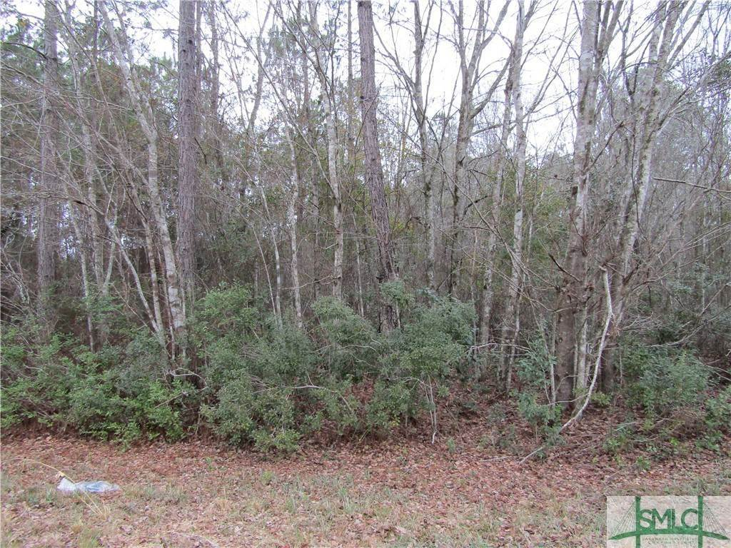 Land for Sale at 0 Ron Road 0 Ron Road Jesup, Georgia 31546 United States