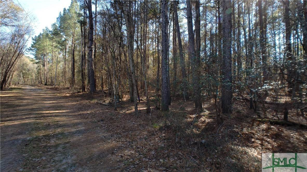 10. Land for Sale at Lot 29, 30, & 31 Lotts Creek Lane Claxton, Georgia 30417 United States