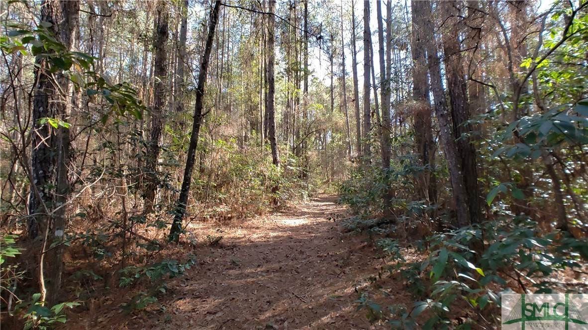 3. Land for Sale at Lot 29, 30, & 31 Lotts Creek Lane Claxton, Georgia 30417 United States