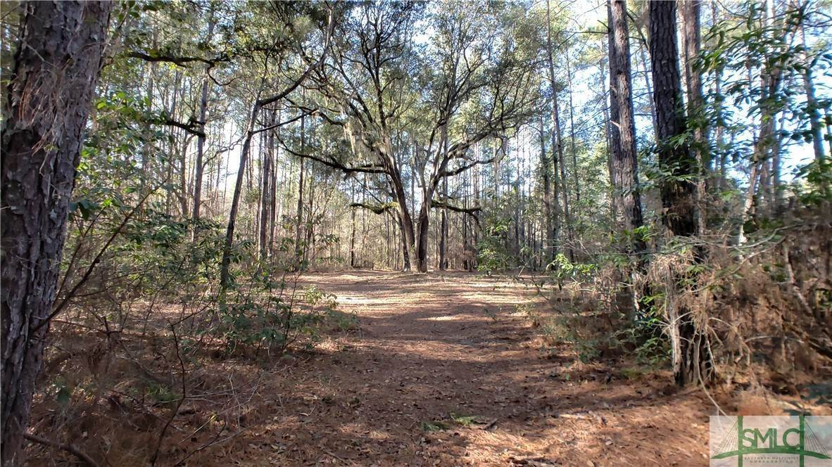 4. Land for Sale at Lot 29, 30, & 31 Lotts Creek Lane Claxton, Georgia 30417 United States